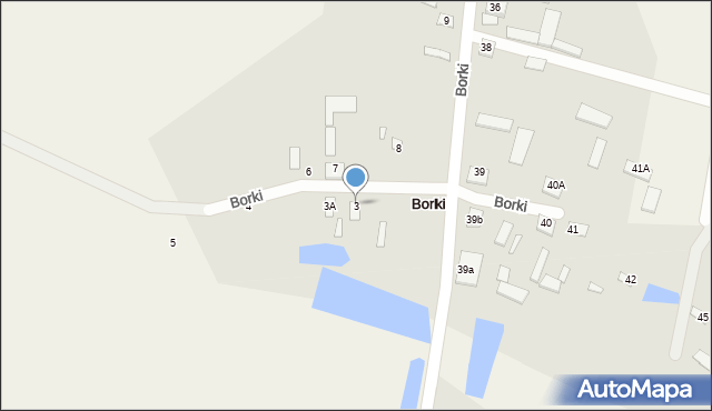 Borki, Borki, 3, mapa Borki