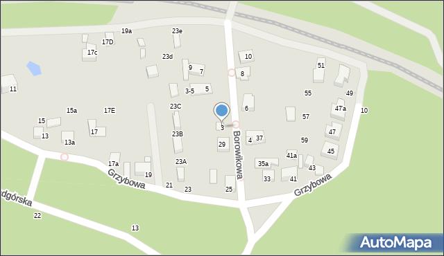 Toruń, Borowikowa, 3, mapa Torunia