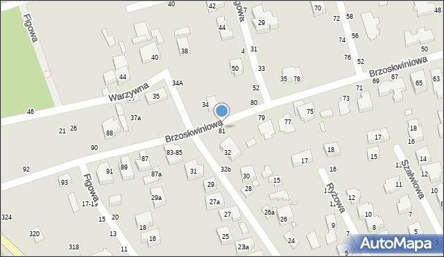 Toruń, Brzoskwiniowa, 81, mapa Torunia
