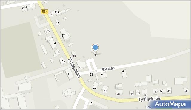 Radzyń Chełmiński, Byczak, 1, mapa Radzyń Chełmiński
