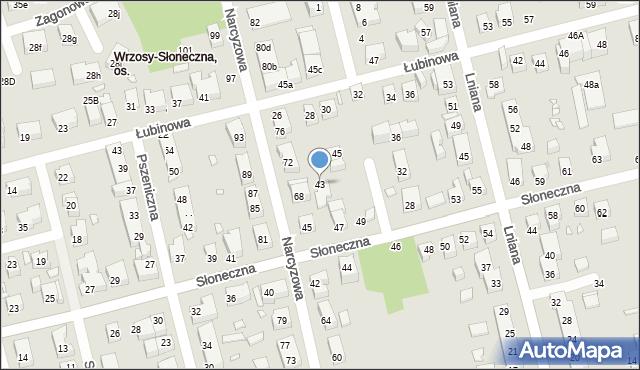 Toruń, Chmielna, 41, mapa Torunia