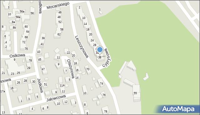 Toruń, Cyprysowa, 38, mapa Torunia