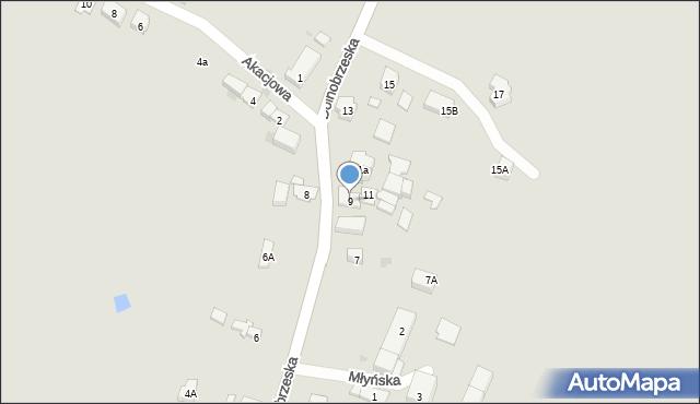 Miękinia, Dolnobrzeska, 9, mapa Miękinia