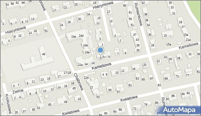Toruń, Kameliowa, 3, mapa Torunia