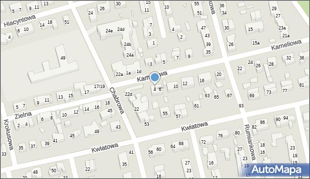 Toruń, Kameliowa, 4, mapa Torunia