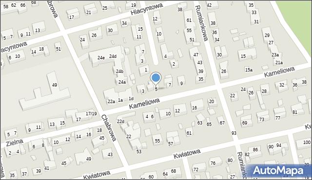 Toruń, Kameliowa, 5, mapa Torunia