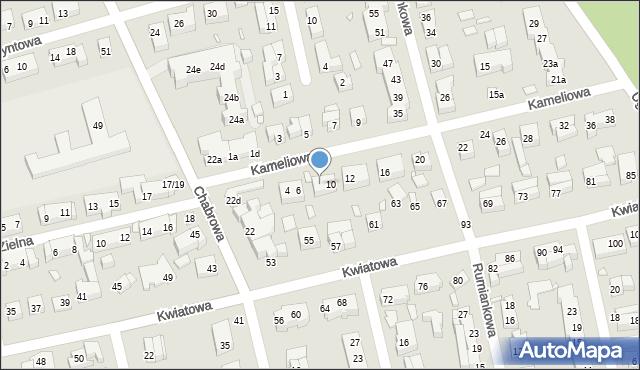 Toruń, Kameliowa, 8, mapa Torunia