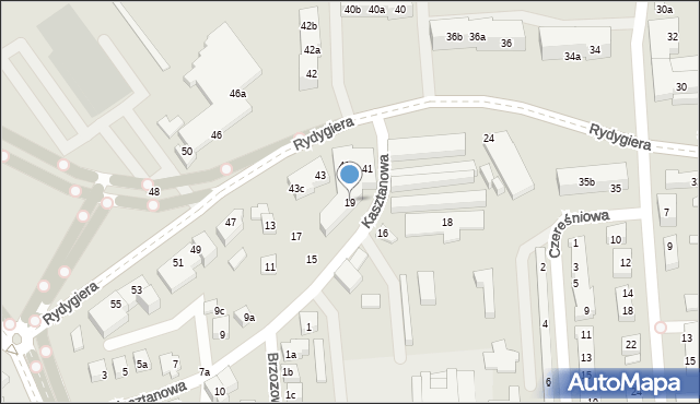 Toruń, Kasztanowa, 19, mapa Torunia