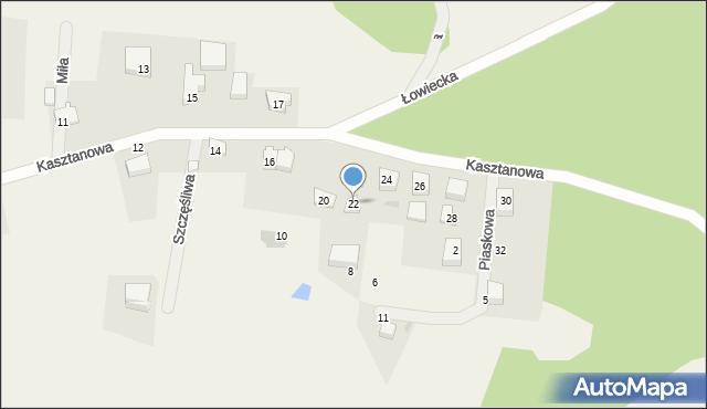 Wyszecino, Kasztanowa, 22, mapa Wyszecino