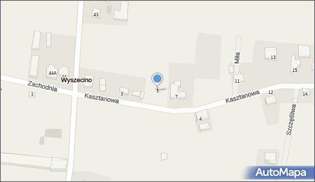 Wyszecino, Kasztanowa, 5, mapa Wyszecino