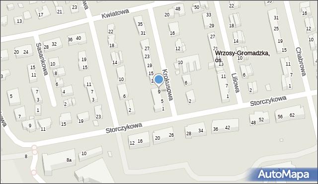 Toruń, Krokusowa, 9, mapa Torunia