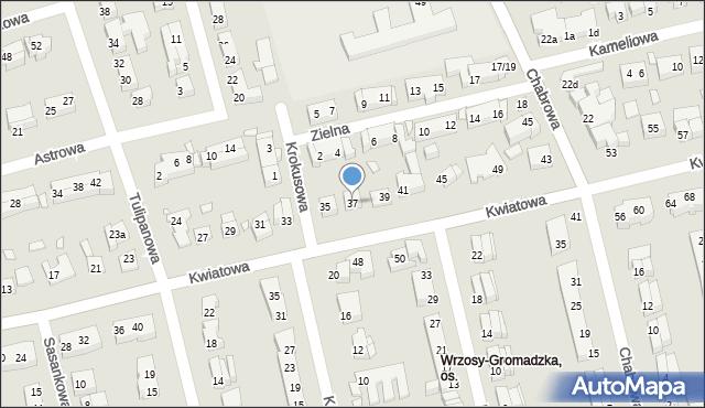 Toruń, Kwiatowa, 37, mapa Torunia