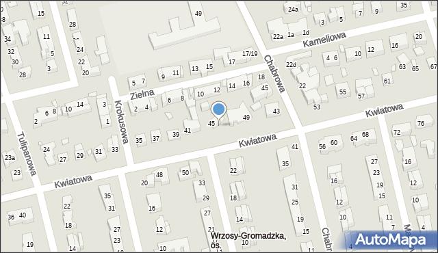 Toruń, Kwiatowa, 47, mapa Torunia