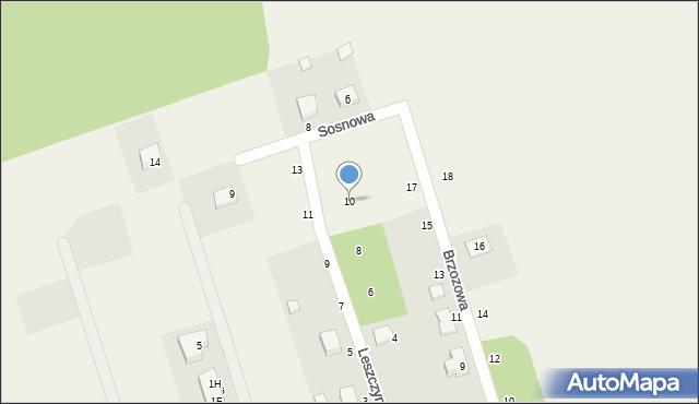 Kochanowo, Leszczynowa, 10, mapa Kochanowo