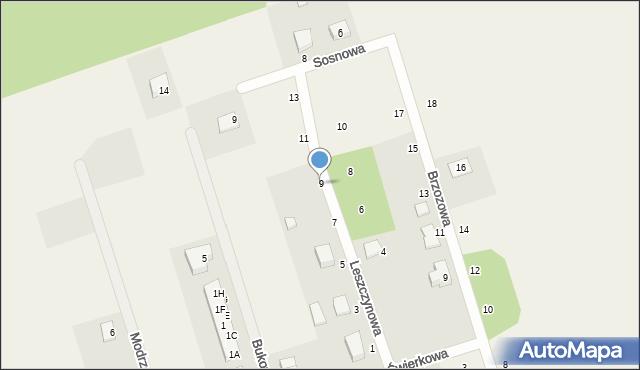 Kochanowo, Leszczynowa, 9, mapa Kochanowo