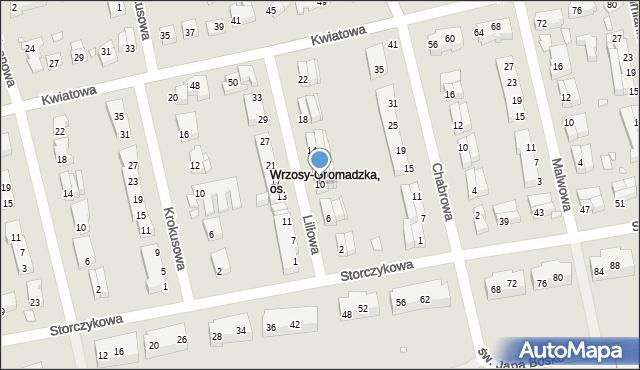 Toruń, Liliowa, 10, mapa Torunia