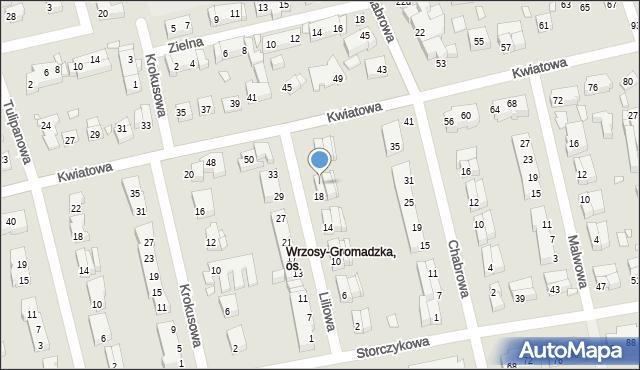 Toruń, Liliowa, 20, mapa Torunia