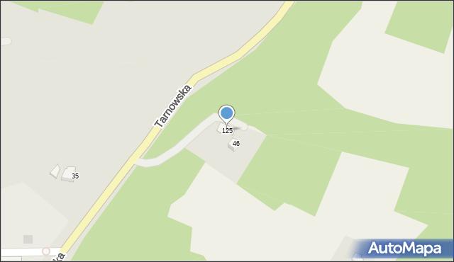 Łososina Górna, Łososina Górna, 125, mapa Łososina Górna