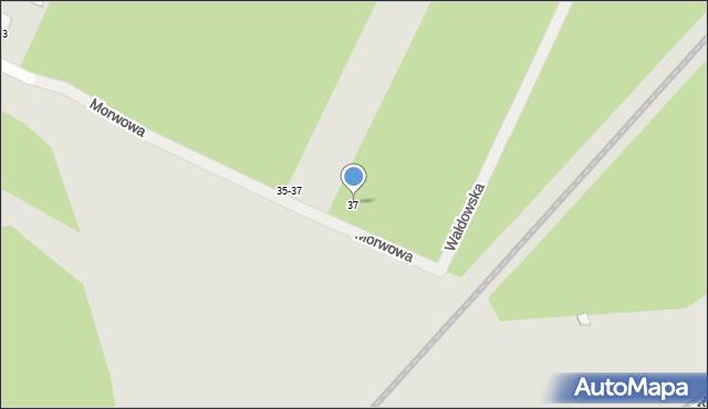 Toruń, Morwowa, 37, mapa Torunia