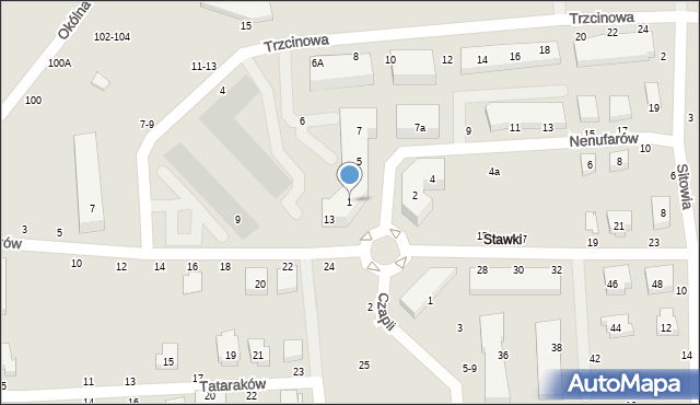 Toruń, Nenufarów, 1, mapa Torunia