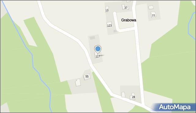 Nowa Wieś, Nowa Wieś, 117, mapa Nowa Wieś