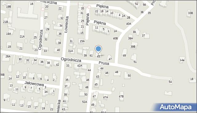 Chełm, Ogrodnicza, 43, mapa Chełma