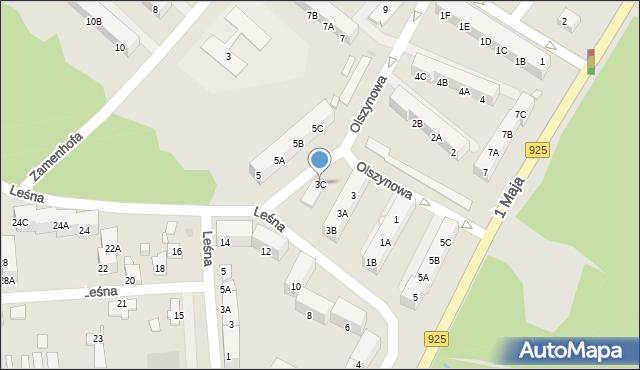 Ruda Śląska, Olszynowa, 3C, mapa Rudy Śląskiej