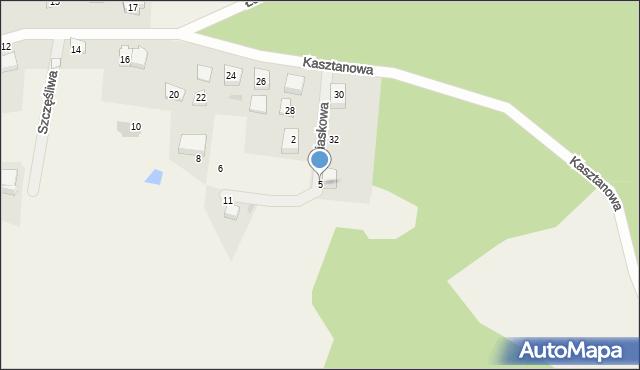 Wyszecino, Piaskowa, 5, mapa Wyszecino