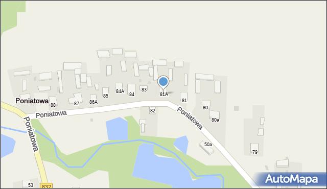 Poniatowa, Poniatowa, 81A, mapa Poniatowa