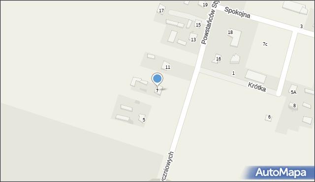 Srebrzyszcze, Powstańców Styczniowych, 7, mapa Srebrzyszcze