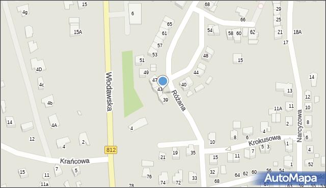 Chełm, Różana, 41, mapa Chełma