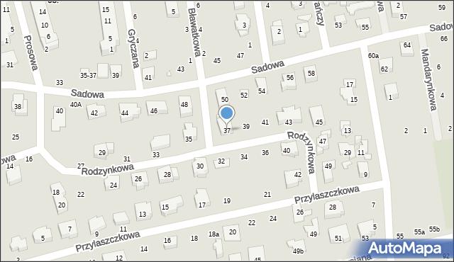 Toruń, Rodzynkowa, 37, mapa Torunia