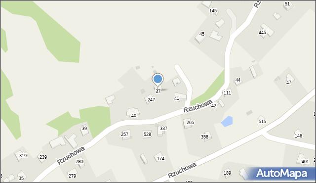 Rzuchowa, Rzuchowa, 37, mapa Rzuchowa