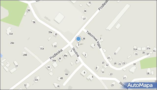 Mikołów, Skośna, 1, mapa Mikołów