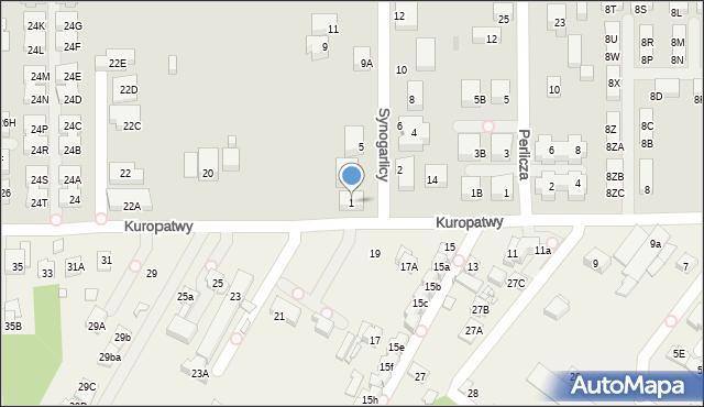 Warszawa, Synogarlicy, 1, mapa Warszawy