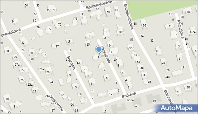 Toruń, Szałwiowa, 11, mapa Torunia