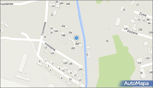Radom, Trzcinowa, 16A, mapa Radomia