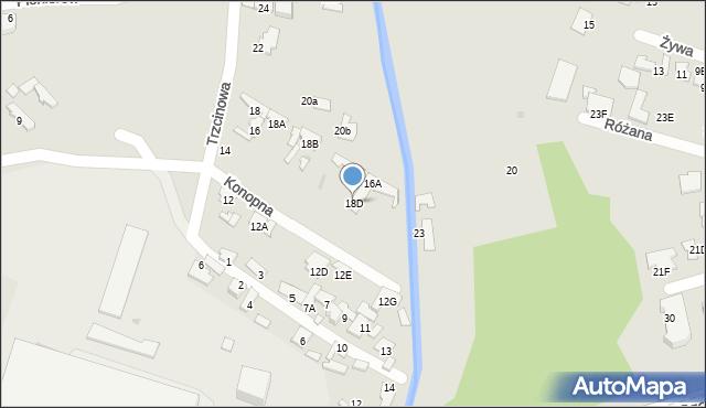 Radom, Trzcinowa, 18D, mapa Radomia