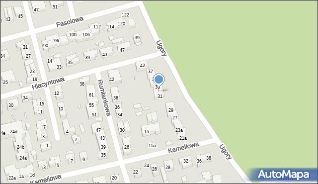 Toruń, Ugory, 31a, mapa Torunia