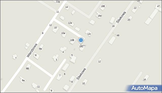 Grudziądz, Wierzbowa, 10C, mapa Grudziądza