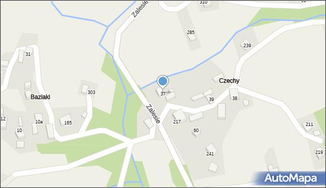 Zalesie, Zalesie, 37, mapa Zalesie