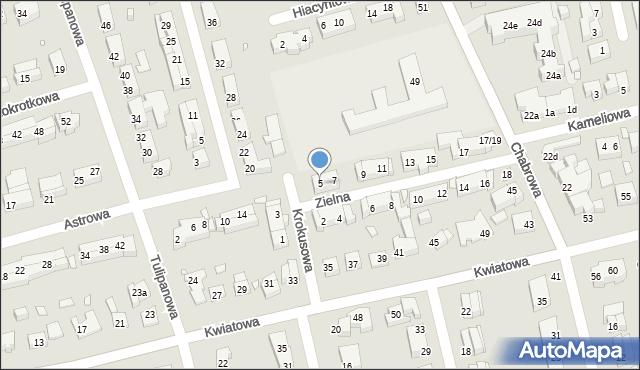 Toruń, Zielna, 5, mapa Torunia
