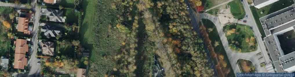 Zdjęcie satelitarne Bialska ul.