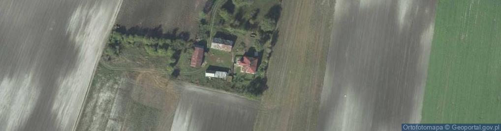 Zdjęcie satelitarne Krzywice-Kolonia ul.
