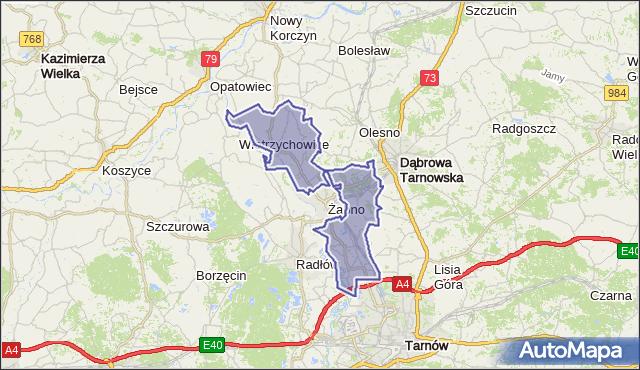 gmina Żabno - powiat tarnowski na mapie Targeo