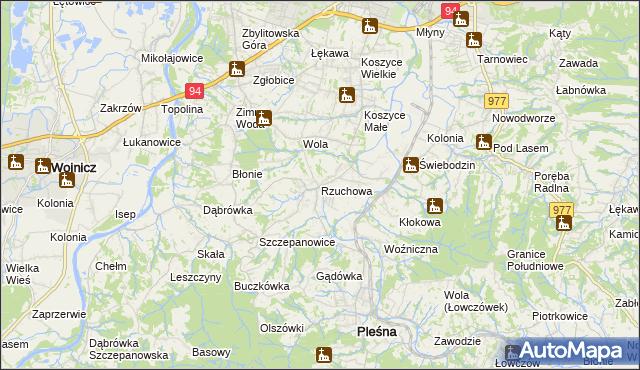mapa Rzuchowa, Rzuchowa na mapie Targeo