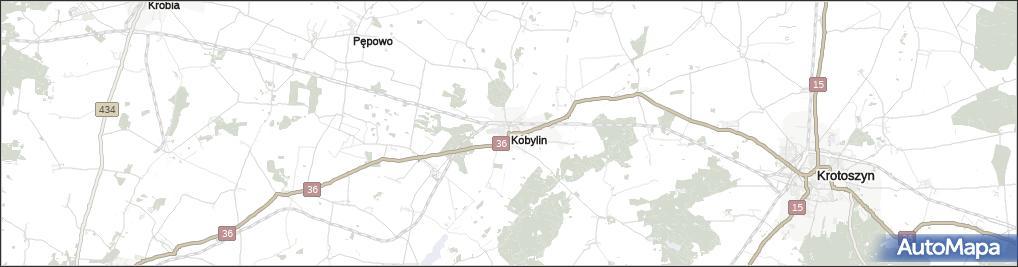 Kobylin