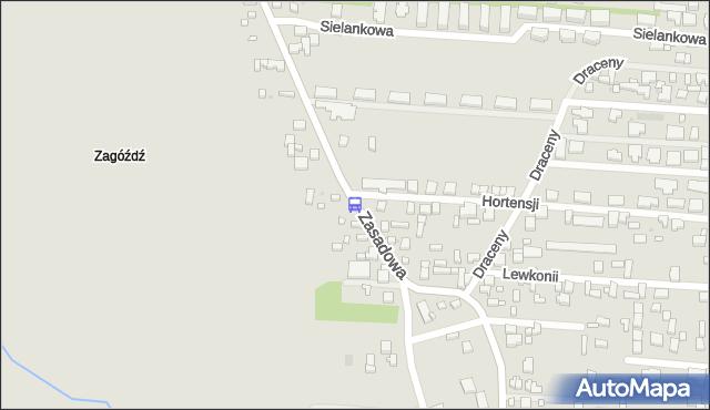 Przystanek Hortensji 01. ZTM Warszawa - Warszawa (id 217101) na mapie Targeo