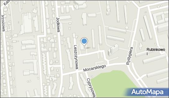 Euronet - Bankomat, ul. Leszczynowa 3, Toruń 87-100, godziny otwarcia