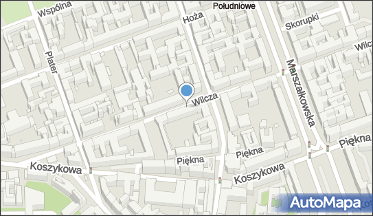 Parkomat, Wilcza, Warszawa 00-679 - Parkomat